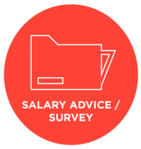 Salary advice / survey